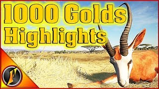 1000th Gold Stream Highlights | theHunter Call of the Wild