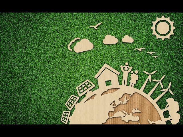 Evde karbon ayak izini azaltmanın 5 kolay yolu!