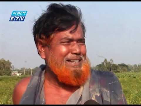 চকরিয়ায় মরিচ বীজ রোপণ করে ক্ষতিগ্রস্ত ৫ শতাধিক কৃষক | ETV News