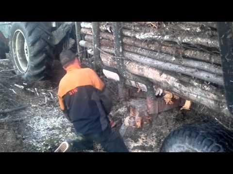 Metsuri jäisellä oksalla.  Lumberjack on an icy branch. Echo cs 2511 tes and Husqvarna 572xp.