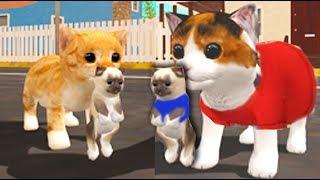 СИМУЛЯТОР Маленького КОТЕНКА #4 Напал БИЗОН беременная кошка смешное видео для детей Валеришка