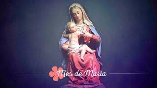 MES DE MARÍA - DÍA 25