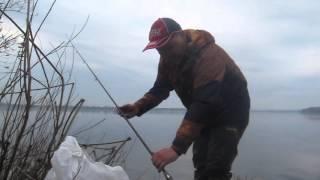 Снасть для ловли плотвы весной на днепре