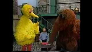 Sesame Street - Carrie's Birthday Party