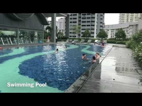 Hotel Boss Singapore 4K Video Review