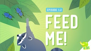 Feed Me: Classifying Organisms - Crash Course Kids #1.2