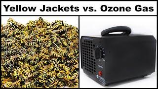 오존가스의 위험성