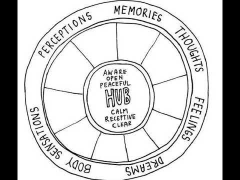 Ce elemente afectează vederea