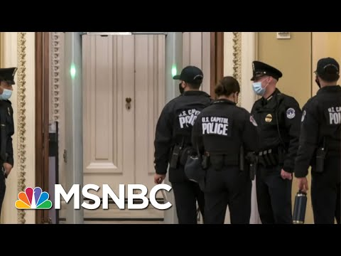 Republican Congressman Caught Trying To Carry Gun Onto House Floor | All In | MSNBC