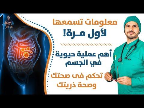 ١٩٥- مالم تسمعه من قبل عن اهم عملية فى جسمك/ تحكم فى صحتك وصحة ذريتك/ المثيلة