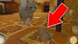 СИМУЛЯТОР МЫШИ приключение мульт игры про кошек и мышек развлекательное видео для детей