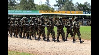 KDF kills 7 Al-Shabaab militants - VIDEO