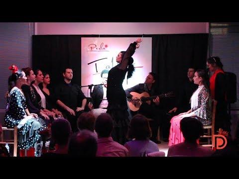 Perla Flamenca: difundindo a arte flamenca