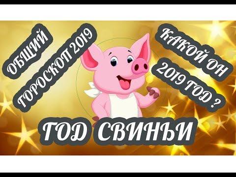 Жёлтая Свинья. Какой он новый 2019 год? Китайский гороскоп на 2019 год для всех знаков зодиака
