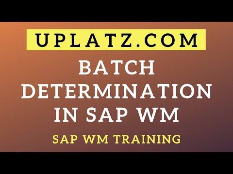 Batch Determination in SAP WM | SAP Warehouse Management ...