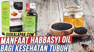 WAJIB ANDA KETAHUI Inilah Khasiat Habbasyi Oil Untuk Kesehat...