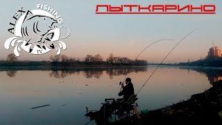 Рыбалка в лыткарино рыбачок