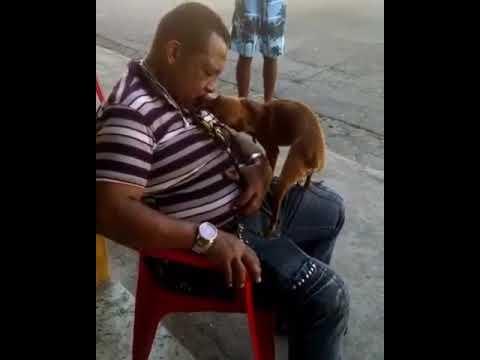Railton da Palmeirinha sofre com a seu Vira lata sem ajuda de ninguém