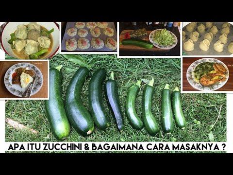 "Apa itu Zucchini dan bagaimana Cara memasaknya   Cooking time ""Masak Bubur Madura""   "