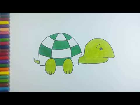 How To Draw Turtle Learning Coloring Pages For Children Cara