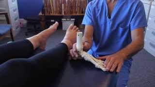 Spread Your Toes™ Series: Capsulitis- Ball of Foot Pain Conservative Care vs. Conventional Care