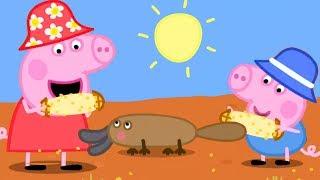 Peppa Wutz 🌽 Peppas Picknick In Australien 🐨 Peppa Pig Deutsch Neue Folgen | Cartoons Für Kinder