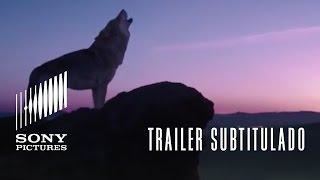 TÓTEM LOBO   Trailer oficial subtitulado (HD)