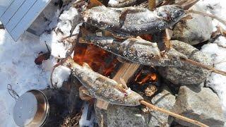 山遊び 渓流釣りで釣った魚を焚き火で食べる 20150315