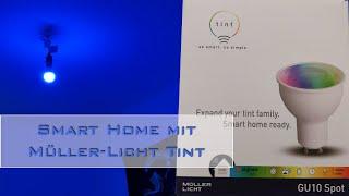 Smarte Beleuchtung mit Tint und Philips Hue - Taugt das? [de]