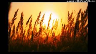 Hợp âm Những Mùa Nắng Đẹp Phạm Duy