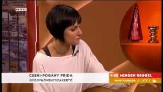 Fahéj, gyömbér, és szegfűszeg: a gyógyító fűszerek - Csehi Pogány Frida