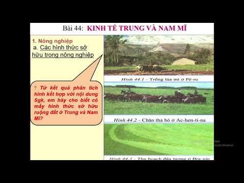 Địa Lí 7 - Tuần24: Bài 44 KINH TẾ TRUNG VÀ NAM MĨ (Tiết 1)