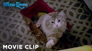 Nine Lives - Who Needs a Litter Box [HD]