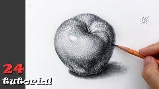 Как нарисовать яблоко карандашом. Академический рисунок.