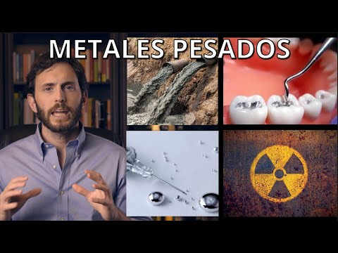 ¿Cómo Los Metales Pesados Pueden Dañar Tu Salud?