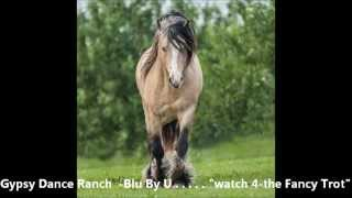 Gypsy Dance Ranch Mr. Blu By U -by Oliver 's GOLD aka O G