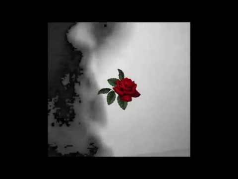 GIANLUCA - ROSAS 🌹 (VIDEO OFICIAL)