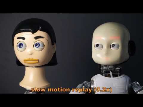 Humotion - A human inspired gaze control framework for anthropomorphic robot heads