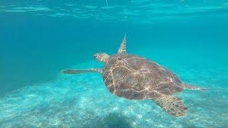 Belize Trip Sept 2014 GoPro