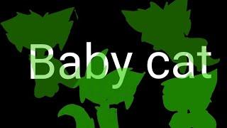 Baby Cat   Origanl meme  