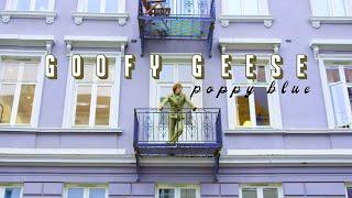 "Goofy Geese – ""Poppy Blue"""