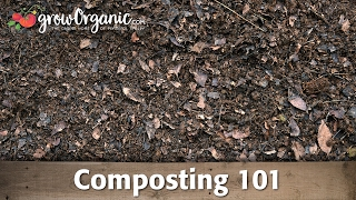 Composting 101 -- Making Compost in Composting Bins and Compost Piles