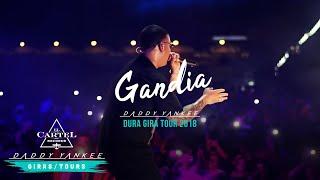 Daddy Yankee - Gandia (La Gira Dura 2018)