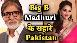 पाकिस्तान चुनाव में Madhuri- Amitabh भी छाए, कैसे देखिए जरा ये रिपोर्ट