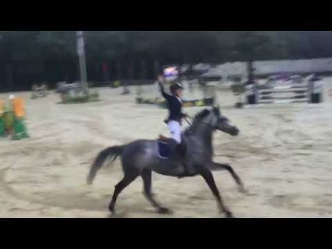 Gilles Nuytens en Mama Mia Picobello Z (Mr Blue x Carthago Z 6yo mare) GP Jump Off Wierden