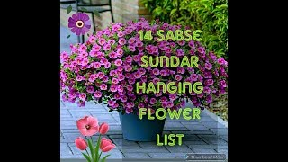 14 Hanging Plant List    Hanging Flower List With Name N Pic
