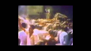 موزیک ویدیو جنون ملی