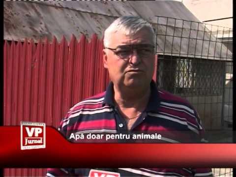 Apă doar pentru animale