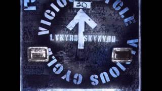 Lynyrd Skynyrd - That's How I Like It.wmv