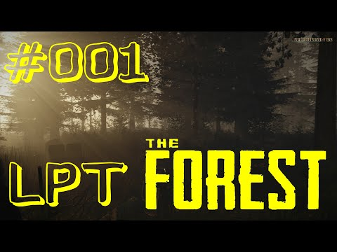 The Forest #001 ★ Gemeinsam abgestürzt ★ Let's Play Together